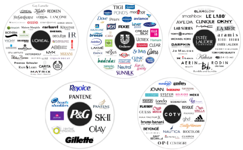Image of 5 makeup companies and brands owned by them.